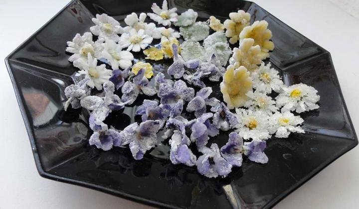 Jak udělat kandované jedlé květy | recept