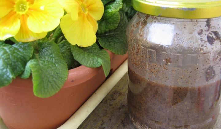 Jak si vyrobit hnojivo z kávy, slupek od banánu a vaječných skořápek